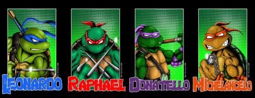 All 4 Turtle Portraits by whittingtonrhett