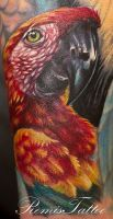 color bird tattoo by Remistattoo