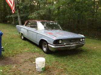 1963 Galaxie After Her First Bath by ChewyTheWolf