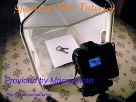 Shooting Tent Tutorial by macrophoto