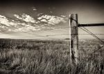 Fenced Out by DeTea