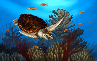 Loggerhead Sea Turtle by Nachiii