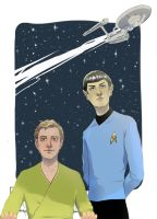 To boldly go by Sildesalaten