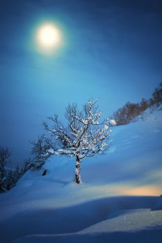At the Heart of Winter by Sortvind