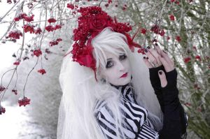 Red berries ...  tribute to Tim Burton by S-T-A-R-gazer