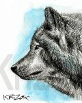 Wolf - Sketch 2 by krizok