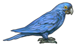 Hyacinth Macaw Parrot Companion by TokoTime