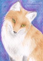 Fox ACEO by CaptainBeth