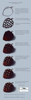 Drawing Blackberry Tutorial by AnasteziA