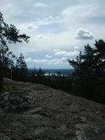 Sweden '09 by Annualize