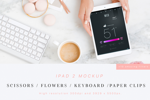 Beauty and Flowers iPad 2 Mockup by theanthnonyrich