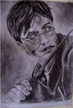 Harry Potter by Billionairere