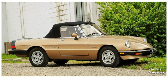 An Alfa Romeo Spider Veloce by TheMan268