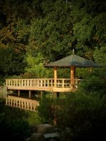 Japanese Garden by excence