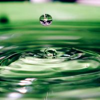 Green Drop. by NurNurIch