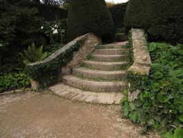 Garden Steps1  stock image by supersnappz16