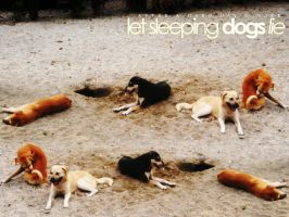 let sleeping dogs lie by upthere