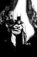 batman in the rabbit hole by Andrew-Robinson