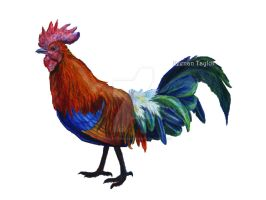 Red Junglefowl by IllustratedMenagerie