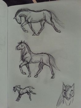 Sketch#3 Horses by Aiclo