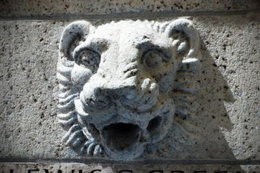 Lion Grotesque by missbunny