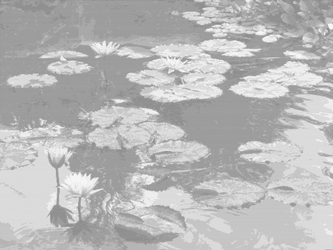 Waterlilies by Ian-Parberry