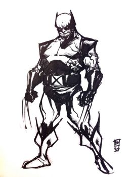 Wolvie sketch by BChing