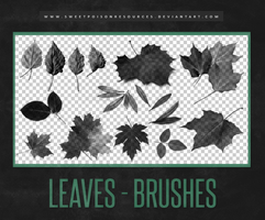 Leaves Brushes | Photoshop by sweetpoisonresources