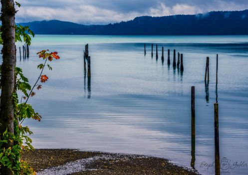 SGPhoto-Morning on Hood Canal by StephGabler