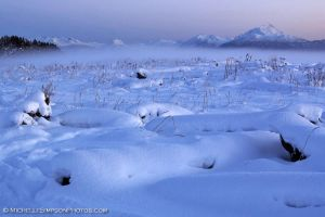 Snow Scape 2 by MSimpsonPhotos