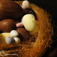 Easter Nest Mud Cake by cakecrumbs