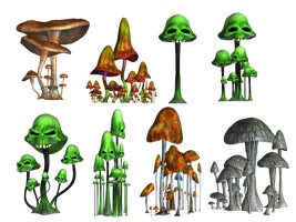 Magic Mushrooms 2 PNG Stock by Roy3D