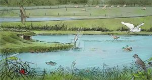 Normandy's swamp fauna by Tessig