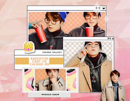 EXO | BAEKHYUN | PACK PNG by KoreanGallery