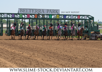 Mar 2016: thoroughbred racehorses breaking by slime-stock