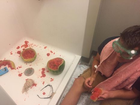 Fun With Rubber Bands and a Watermelon by TraumaChick777