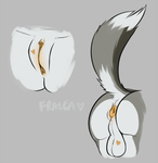 a vulva and a butt by fralea