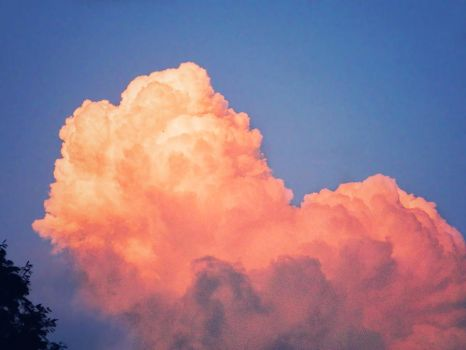 Cotton Candy Cloud by WillTC