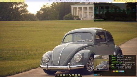 Herbie rides over Herbs on Manjaro ! by rvc-2011