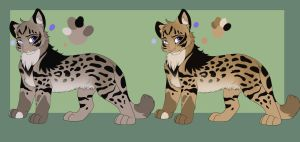 Serval/Maine Coon cross by WingsandFeathers