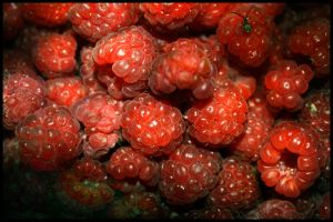 Raspberries. by andrisanteodora