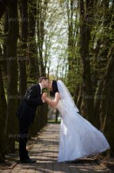Bride and Groom Kissing on a Park Alley by Ondrejvasak