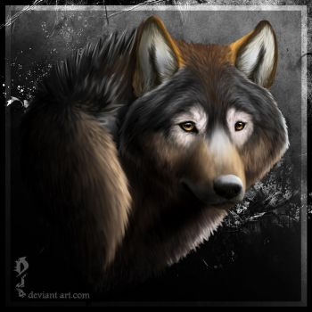 portrait of a wolf by byDjo