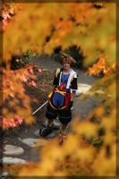 Sora- Leaves by twinfools