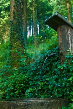 Fountain in the woods by KnortKnarsonn