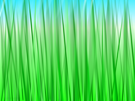 Pure Grassy Grassness by missiriswolfe