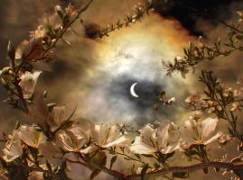 Eclipse by ahermin