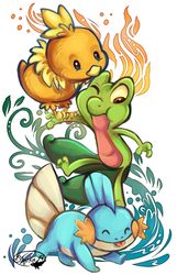 ORAS Starters by sharkie19