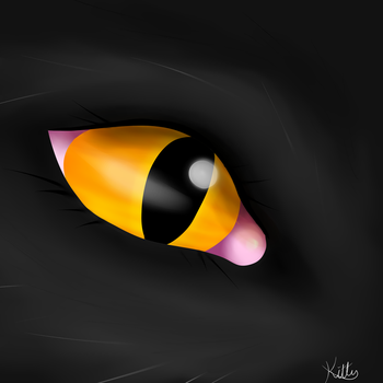 Cat eye by okkittycat1011