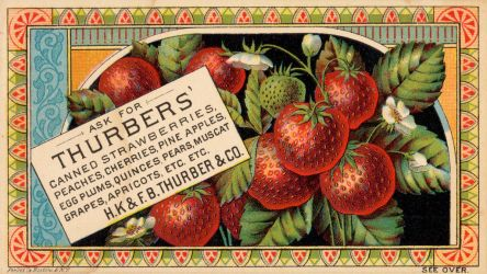 Victorian Advertising - Tasty and Reliable by Yesterdays-Paper